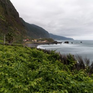 View of a vineyard plantations in madeira island.